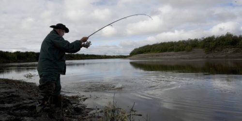 Karpfenangeln am See und Fluss