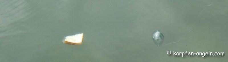 montage-mit-schwimmkugel
